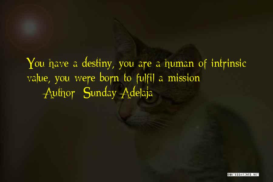 Intrinsic Value Quotes By Sunday Adelaja