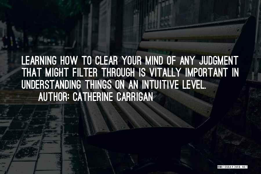 Intuitive Quotes By Catherine Carrigan