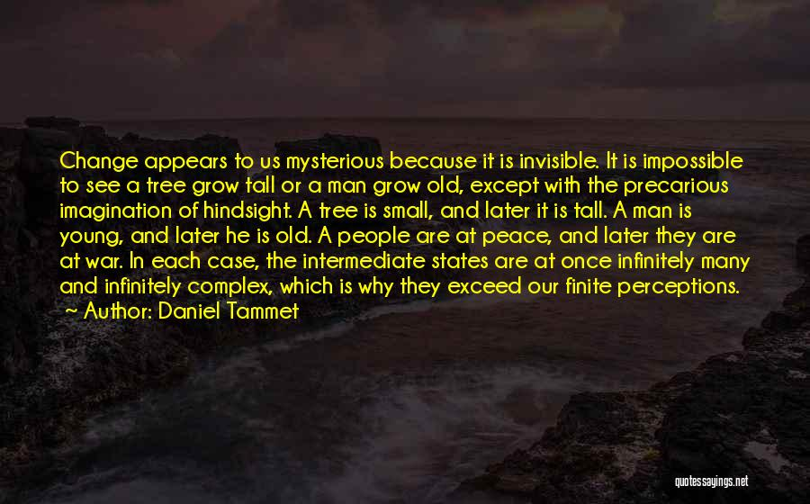 Invisible Man Invisible Quotes By Daniel Tammet