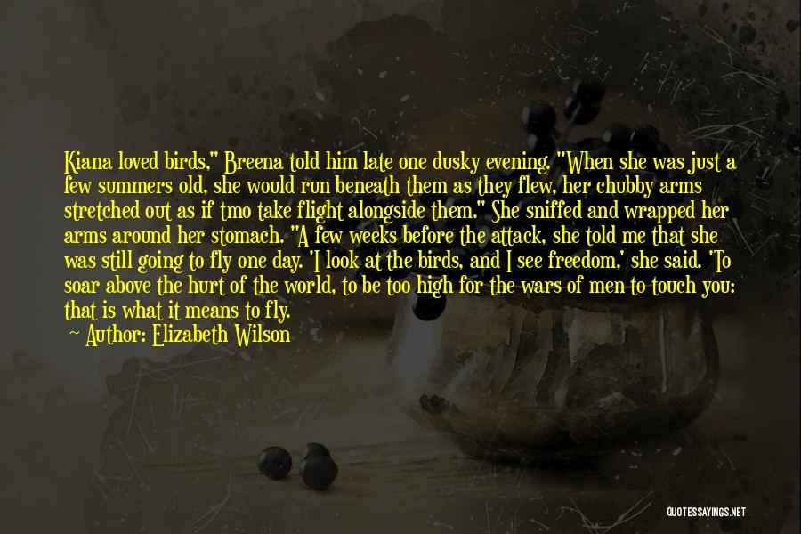 Irish Mythology Quotes By Elizabeth Wilson