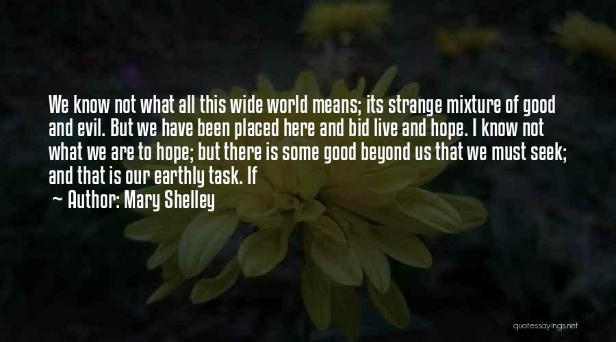 Is There Hope Quotes By Mary Shelley