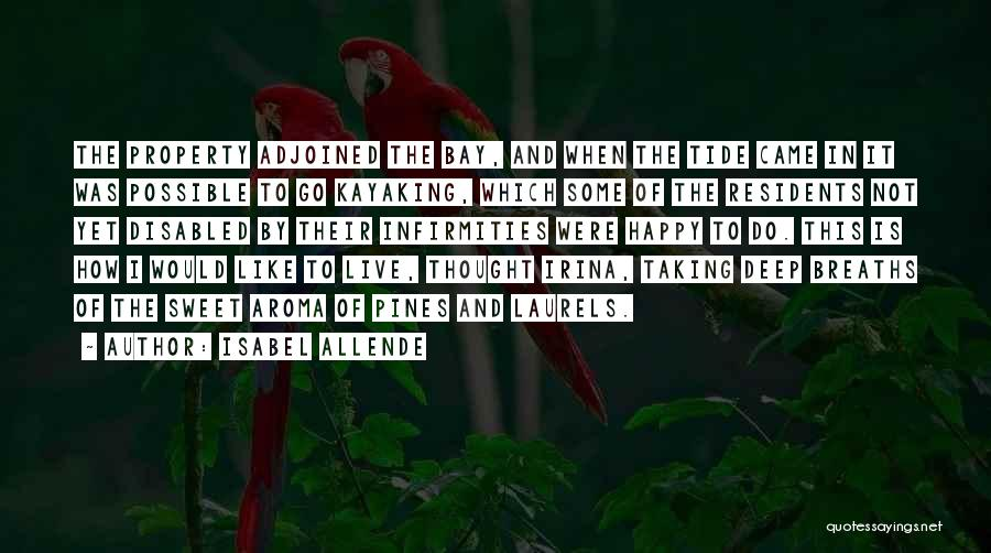 Isabel Allende Quotes 1440643