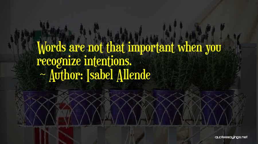 Isabel Allende Quotes 1780826