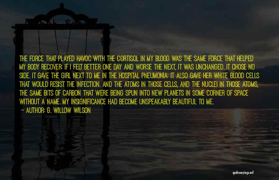 Islam Beautiful Quotes By G. Willow Wilson