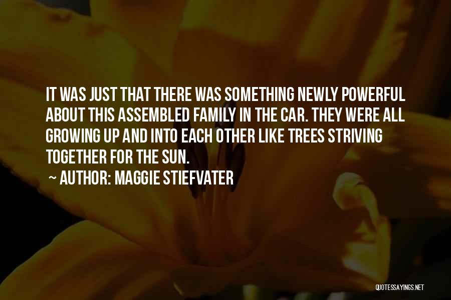 It All About Friendship Quotes By Maggie Stiefvater