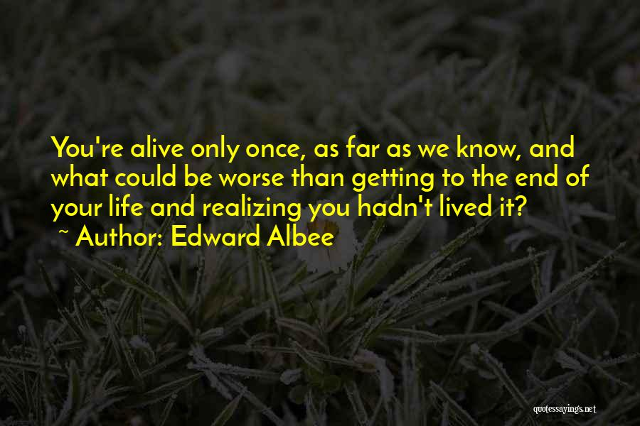 It Could Be Worse Quotes By Edward Albee