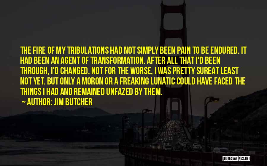 It Could Be Worse Quotes By Jim Butcher