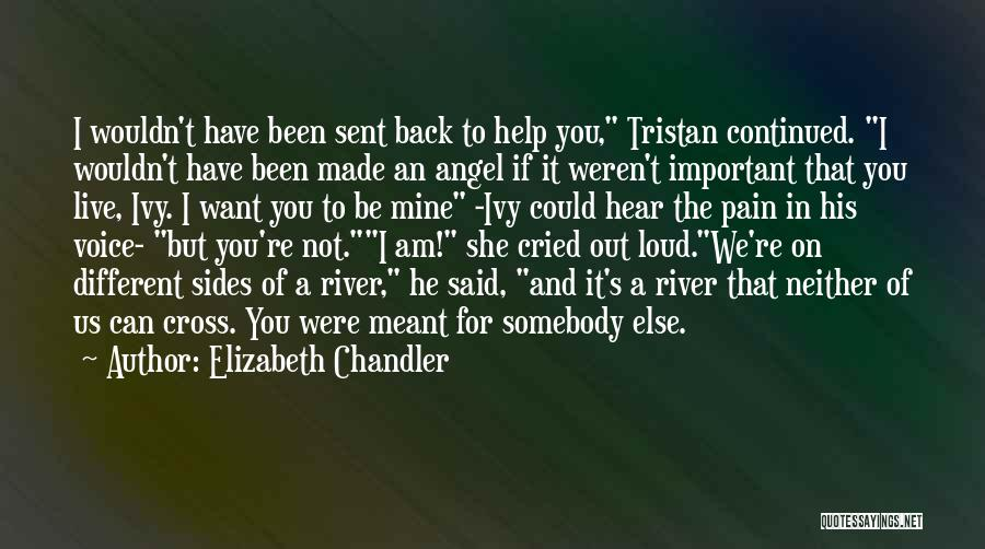 It Could Have Been Different Quotes By Elizabeth Chandler