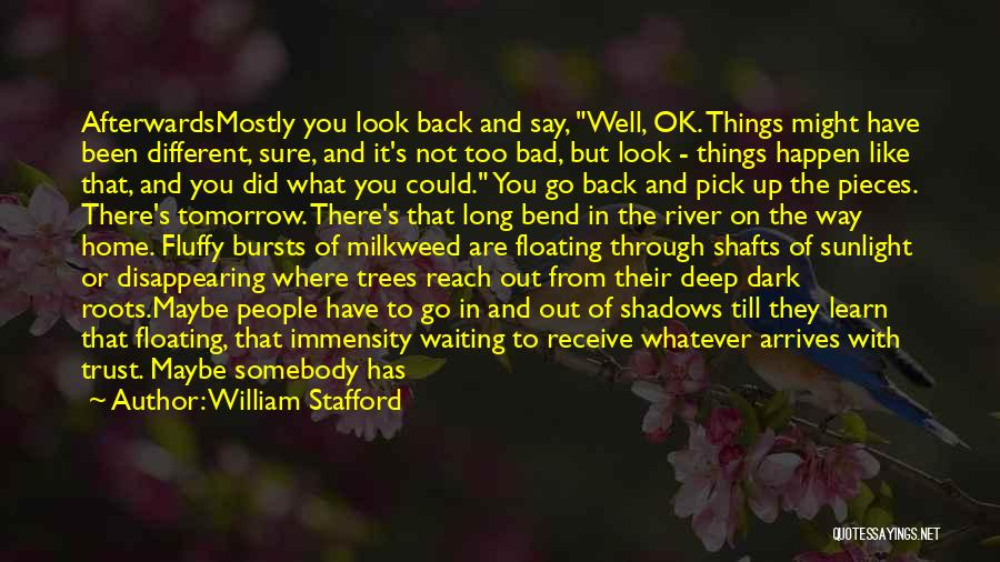 It Could Have Been Different Quotes By William Stafford