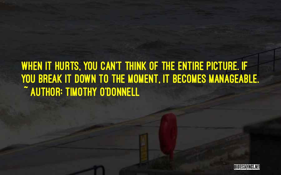 It Hurts But I Have To Let Go Quotes By Timothy O'Donnell