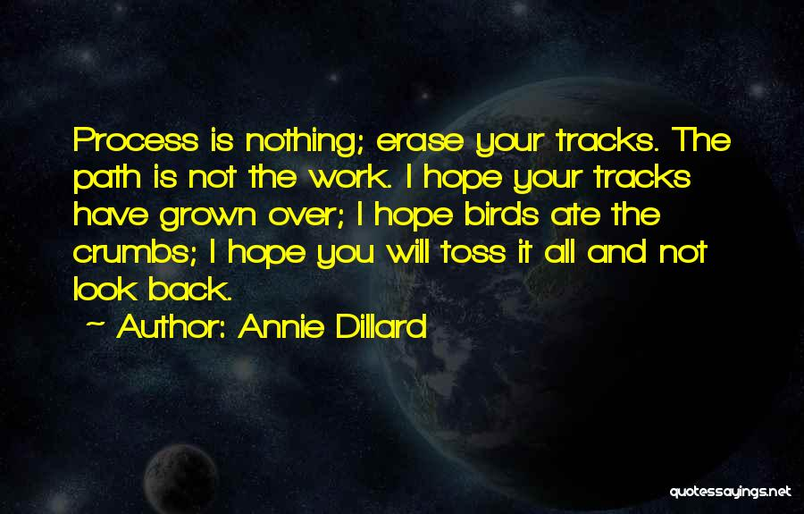 It Is All Over Quotes By Annie Dillard