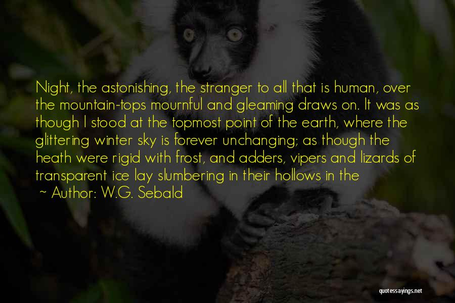 It Is All Over Quotes By W.G. Sebald