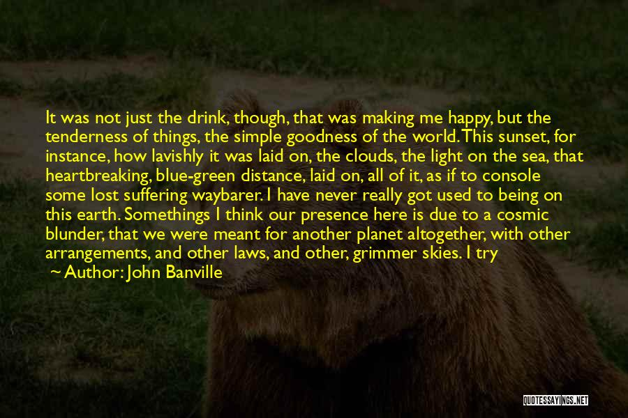 It Not That Simple Quotes By John Banville