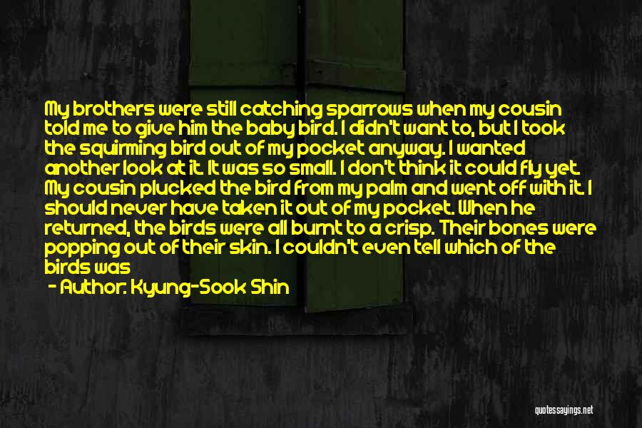 It Was Never Mine Quotes By Kyung-Sook Shin
