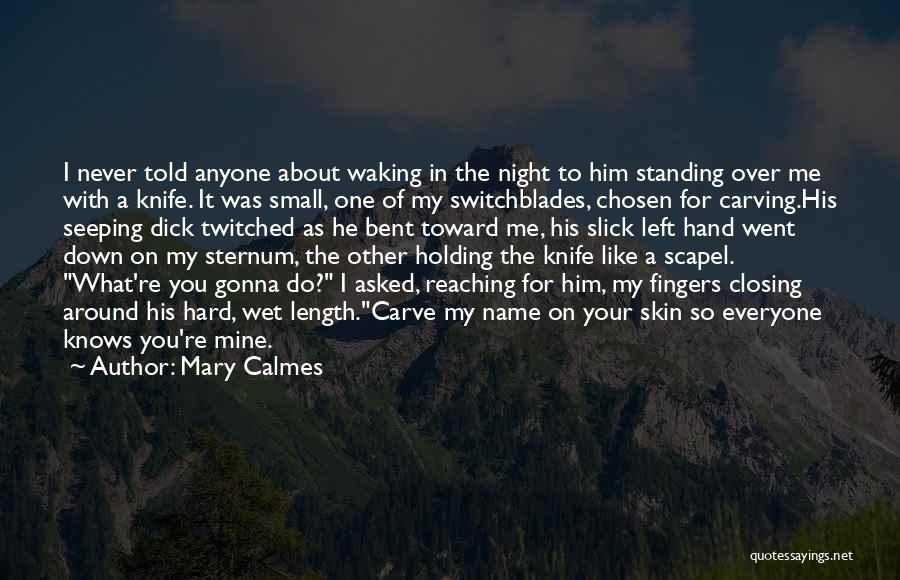 It Was Never Mine Quotes By Mary Calmes