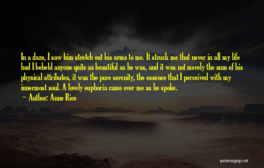 It's A Lovely Life Quotes By Anne Rice