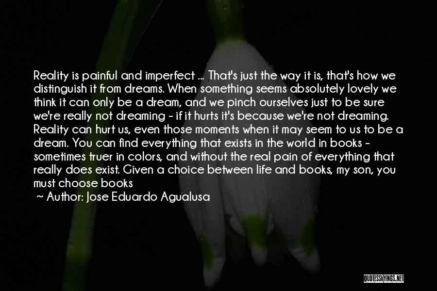 It's A Lovely Life Quotes By Jose Eduardo Agualusa