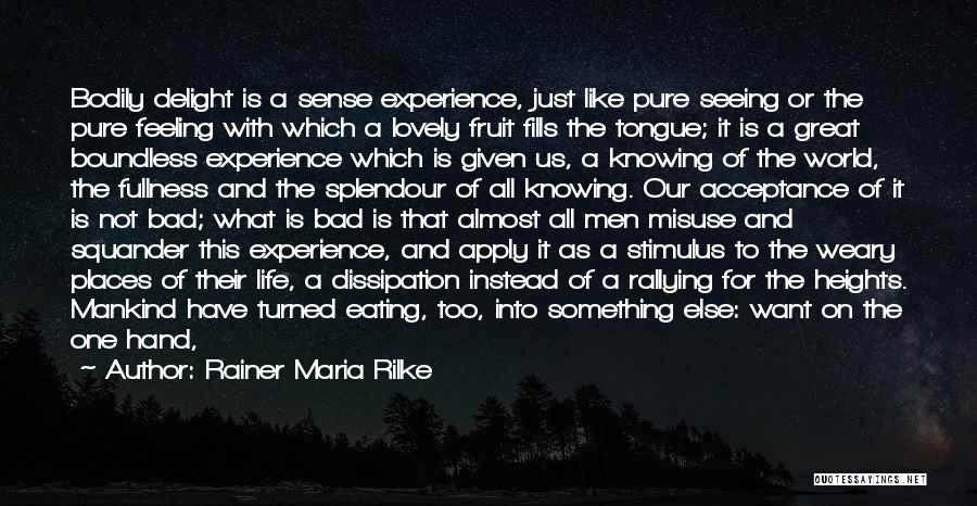 It's A Lovely Life Quotes By Rainer Maria Rilke