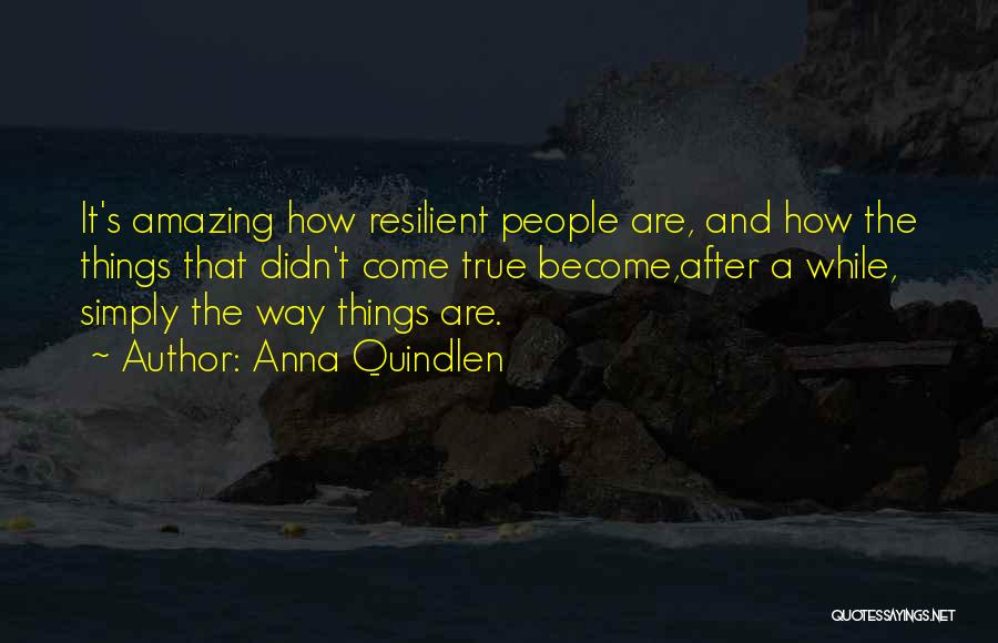 It's Amazing How Quotes By Anna Quindlen