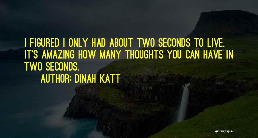 It's Amazing How Quotes By Dinah Katt