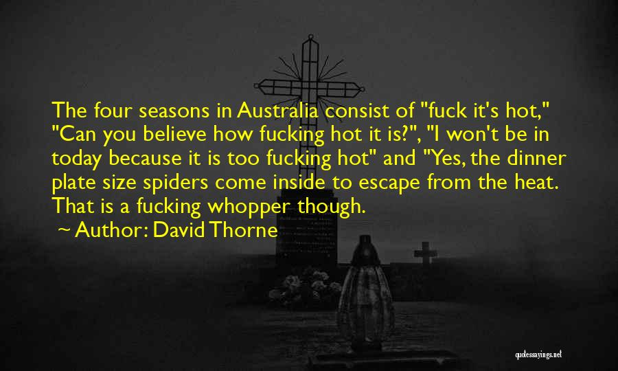 It's Hot Today Quotes By David Thorne