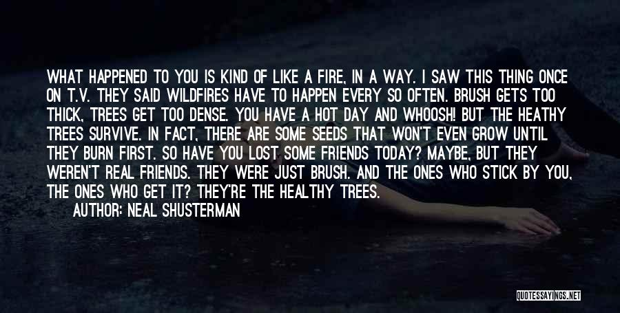 It's Hot Today Quotes By Neal Shusterman