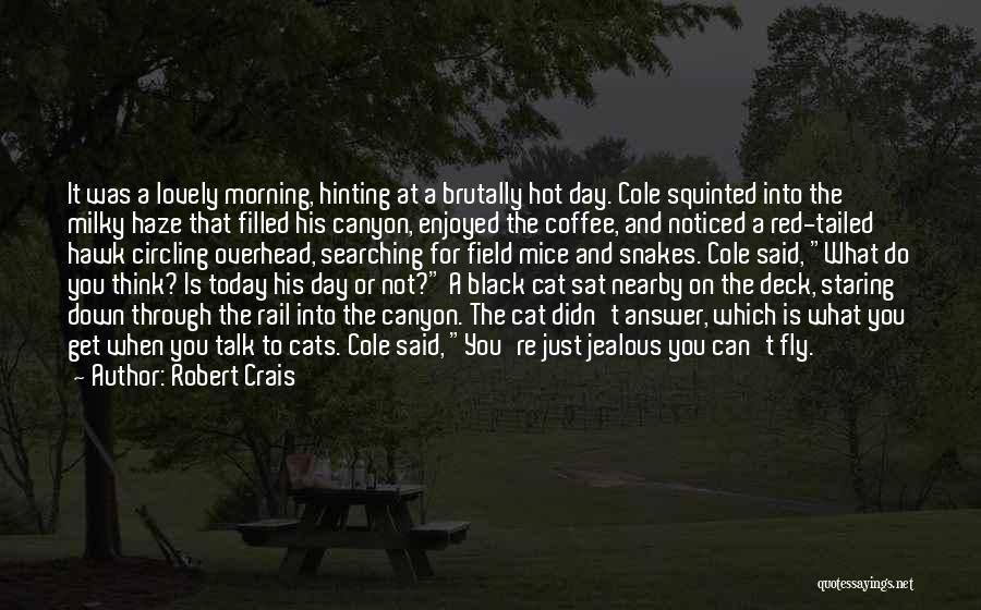 It's Hot Today Quotes By Robert Crais