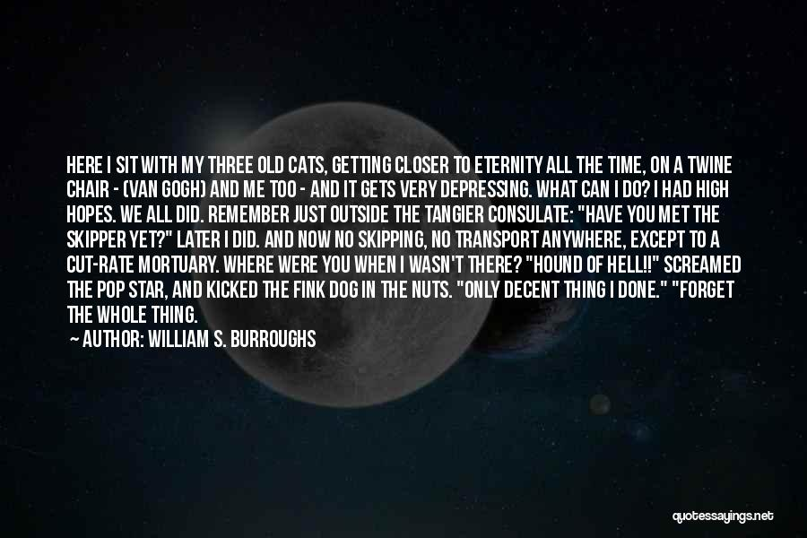 It's Just Me Now Quotes By William S. Burroughs