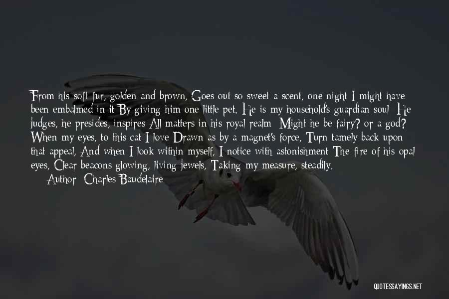 It's Love When Quotes By Charles Baudelaire