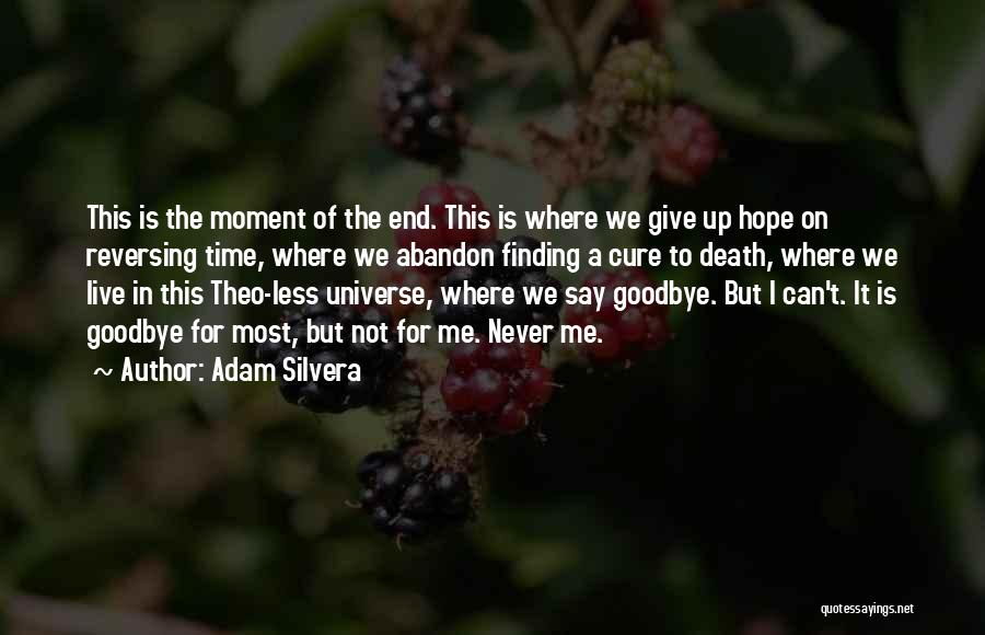 It's Not Goodbye Quotes By Adam Silvera