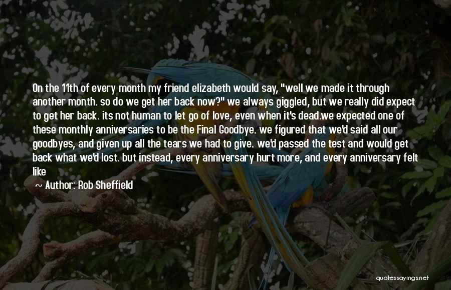 It's Not Goodbye Quotes By Rob Sheffield