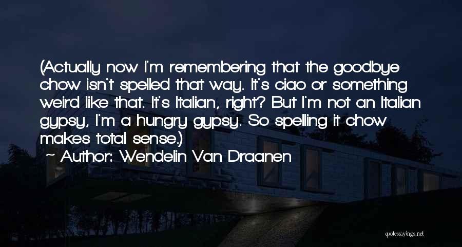 It's Not Goodbye Quotes By Wendelin Van Draanen