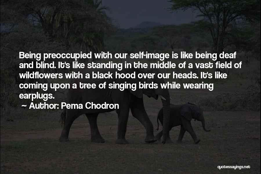 It's Over Image Quotes By Pema Chodron