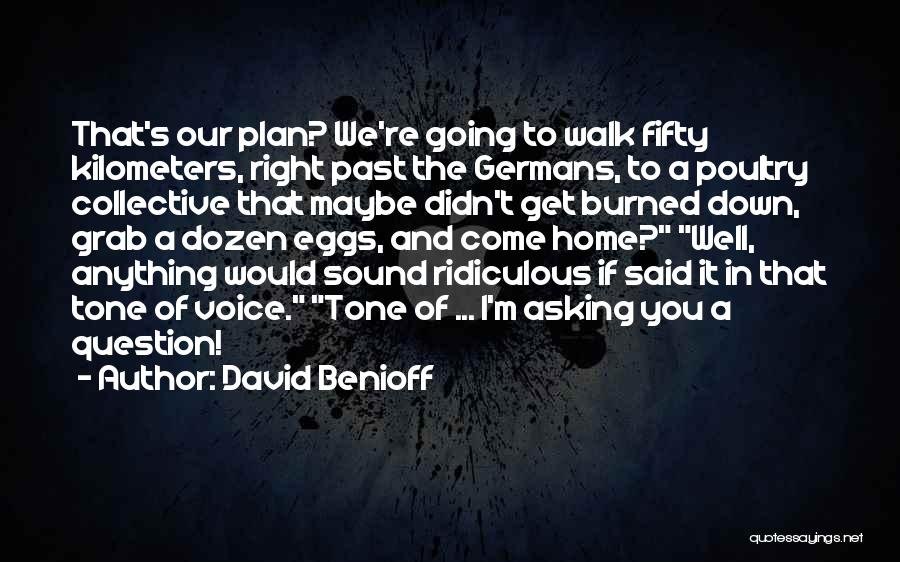 It's Well Quotes By David Benioff