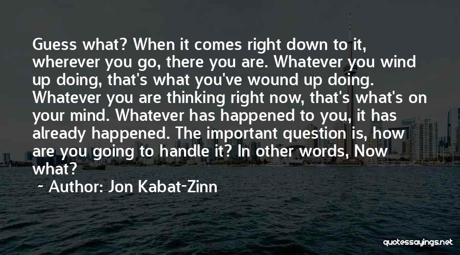 It's Whatever Now Quotes By Jon Kabat-Zinn