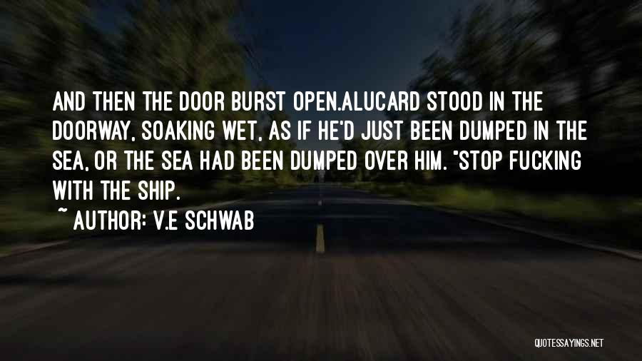 I've Been Dumped Quotes By V.E Schwab