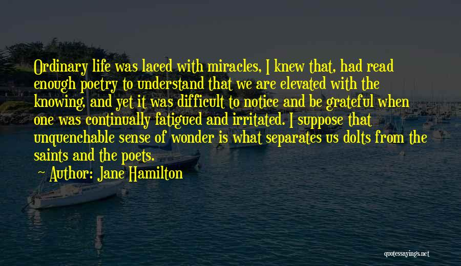 I've Had Enough Of Life Quotes By Jane Hamilton