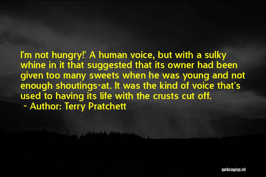 I've Had Enough Of Life Quotes By Terry Pratchett