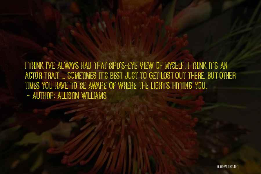 I've Lost Myself Quotes By Allison Williams