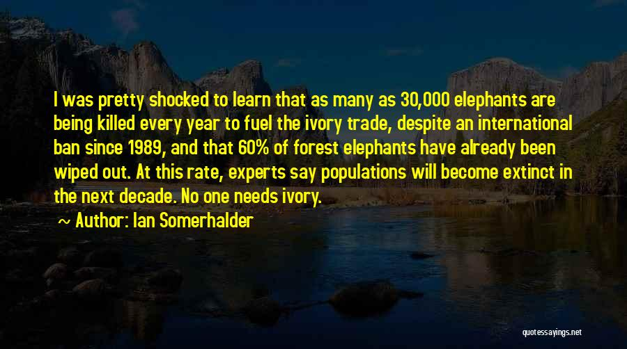 Ivory Trade Quotes By Ian Somerhalder