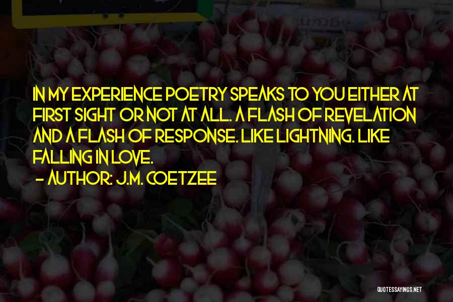 J.M. Coetzee Quotes 1109106
