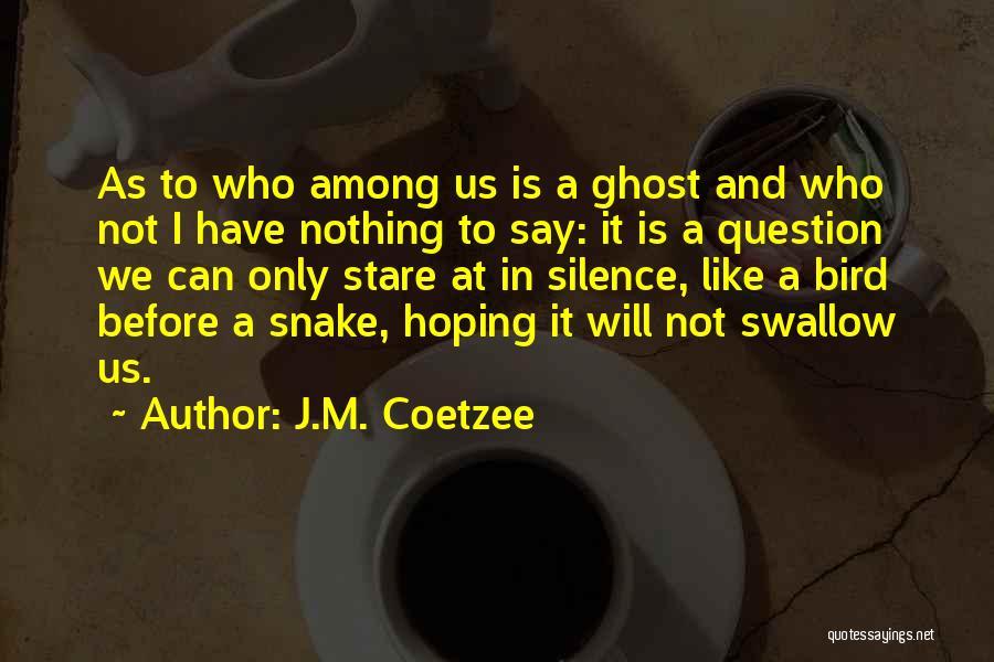 J.M. Coetzee Quotes 1658122
