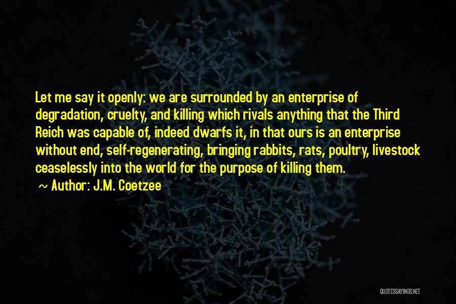 J.M. Coetzee Quotes 175764