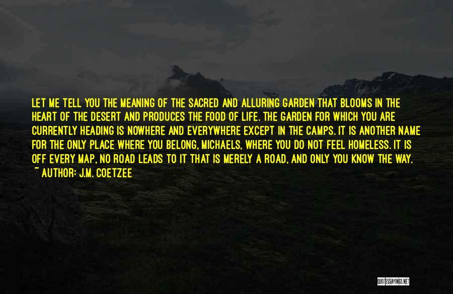 J.M. Coetzee Quotes 1929034
