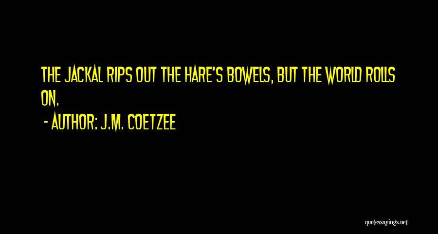 J.M. Coetzee Quotes 1985214