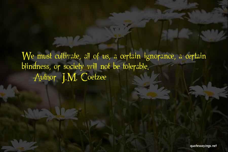 J.M. Coetzee Quotes 2008562
