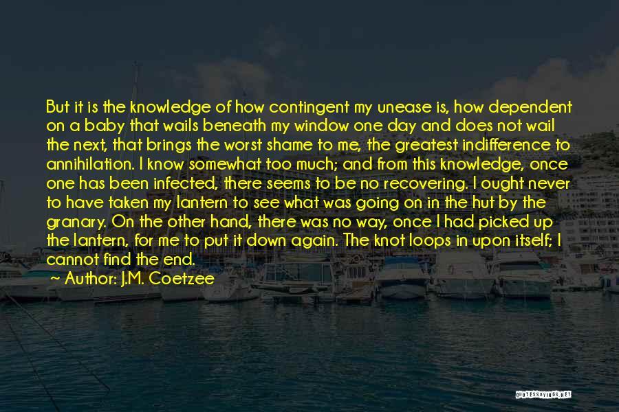 J.M. Coetzee Quotes 2230028