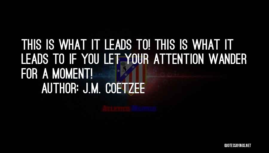 J.M. Coetzee Quotes 452481