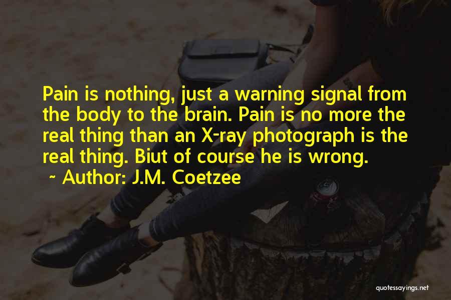 J.M. Coetzee Quotes 460122