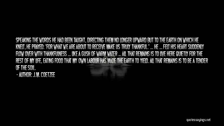 J.M. Coetzee Quotes 591069